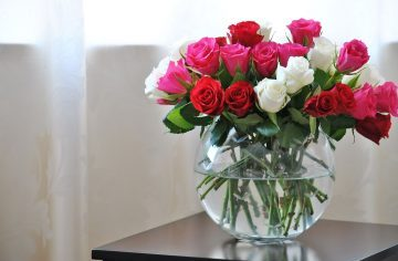 Roses in a Flower Vase