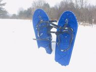 blue snowshoes stuck in snow