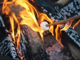 roasting a marshmellow over a blazing fire
